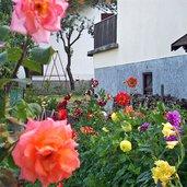 Das Blumendorf
