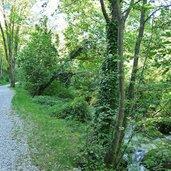 Kopie von: D-8188-sentiero-accanto-al-rio-ponale.jpg