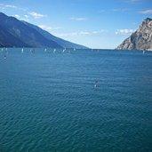 Kopie von: D-0247-lago-di-garda-presso-torbole.jpg