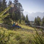Alpine-Coaster-Gardone-Latemar-Trentino-Val-di-Fiemme_ph.Modica_(3)PICCOLA.jpg