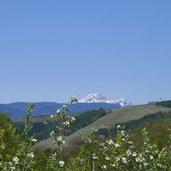 D-0711-vista-verso-il-monte-luco-a-nord.jpg