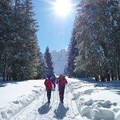 D-4984-sentiero-val-venegia-per-malga-venegia-inverno-escursionisti.jpg