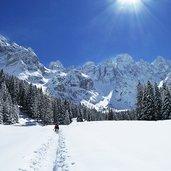 D-5089-sentiero-val-venegia-e-gruppo-pale-di-san-martino-inverno.jpg
