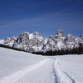 D-5157-sentiero-invernale-calaita-e-pale-di-s-martino.jpg