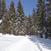 D-5191-sentiero-invernale-calaita.jpg