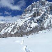 D-5232-sentiero-val-venegia-e-monte-mulaz-inverno.jpg