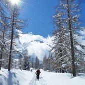 D-5248-sentiero-val-venegia-e-gruppo-pale-di-san-martino-inverno-escursionisti.jpg