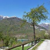 D-6804-sentiero-da-canale-di-tenno-al-lago-di-tenno-primavera.jpg