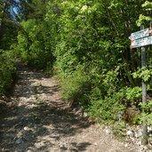 D-8162-salita-sentiero-per-malga-albi.jpg