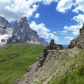 D-8603-vista-dal-castellaz-sul-cimon-della-pala.jpg