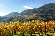 Altavalle