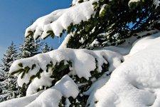 Winterlandschaft - atmosfera invernale