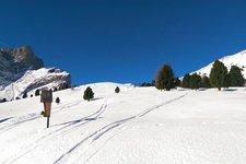 Escursione invernale Alpe Lusia