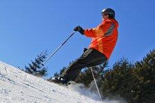 Altro sciatore, sci generico, dettaglio