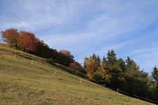 clima_metereologia_trentino_autunno