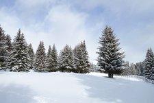 clima_metereologia_inverno