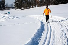 stux cross country skiing
