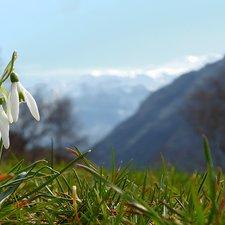 Sulle orme della primavera a Ledro