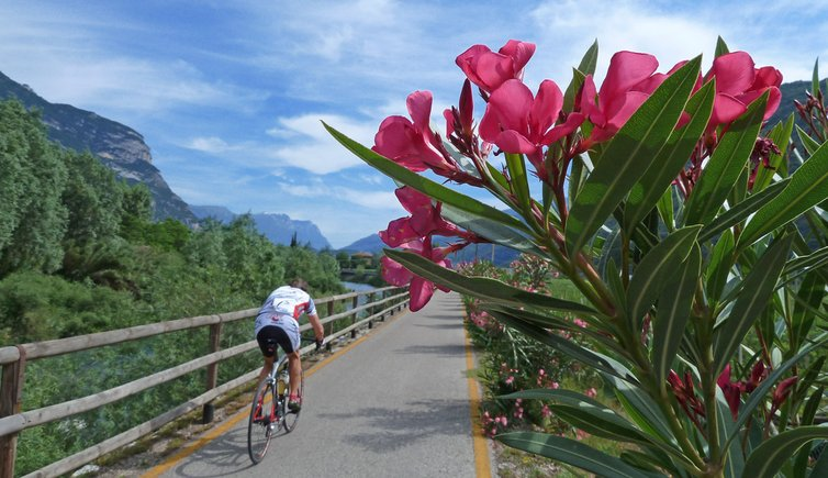 Cycle paths in the Trentino, Foto: AT, © Peer
