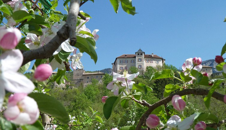 Da Vigo di Ton a Castel Thun, Foto: AT, © Peer