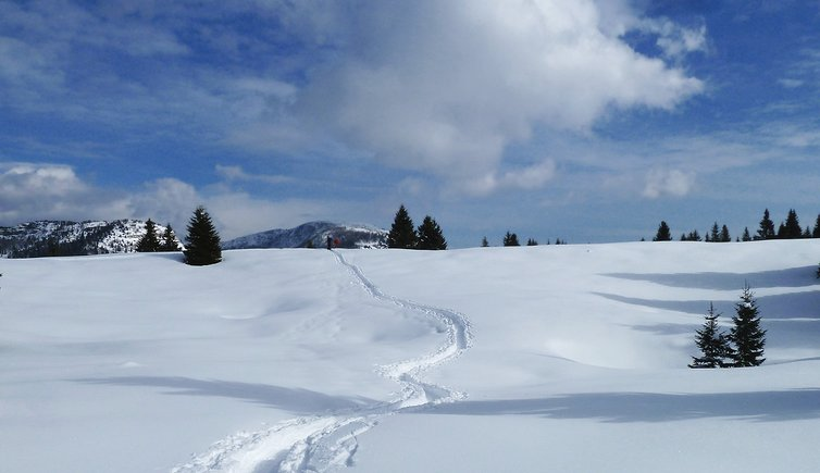 Alpe Cimbra - Folgaria Lavarone Luserna, Foto: AT, © Peer