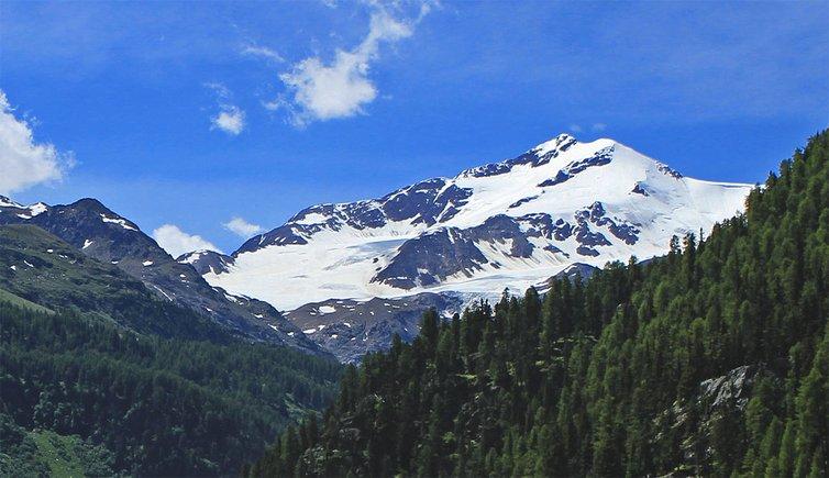 Monte cevedale trentino provincia di trento for Monti del trentino