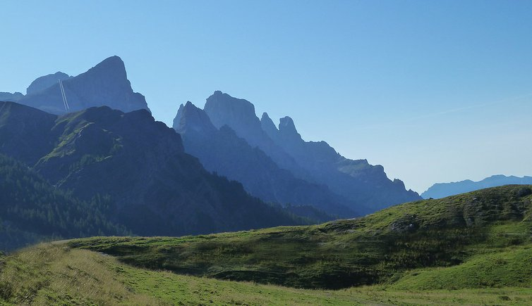 Parco naturale Paneveggio Pale di San Martino, Foto: AT, © Peer