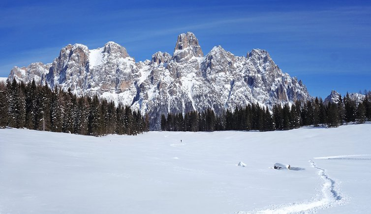 Primiero San Martino di Castrozza, Foto: AT, © Peer