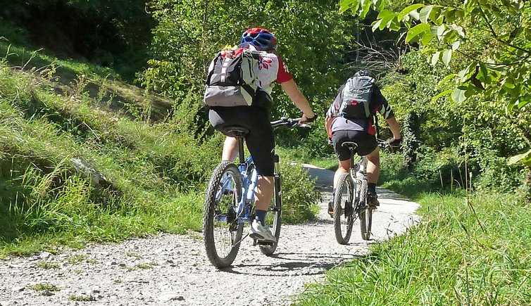 Bici e mountain bike, Foto: AT, © Peer
