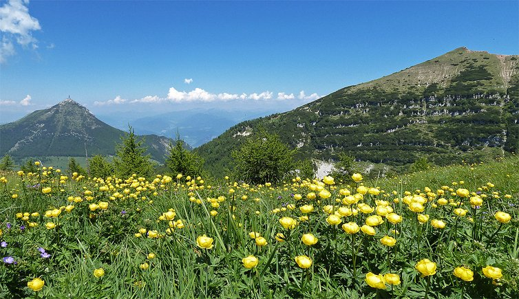 Trento, Bondone, Valle dei Laghi, Rotaliana, Foto: AT, © Peer