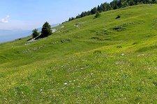 Malga Bodrina, Valle di Non